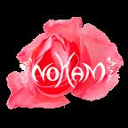 noham-myriam-ballot-o-soins-essentiels-avignon-luberon-vaucluse-marseille-bouches-du-rhone-paca